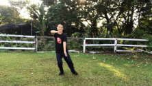 Teachlr.com - Tai Chi Chen 22 for Beginner - Strengthens Mind and Body