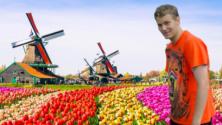 Teachlr.com - Dutch Language & Grammar Immersion and Insights