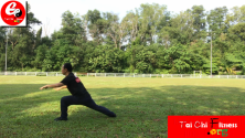 Teachlr.com - Amazing Classic Yi Jin Jing (Muscle and Tendon Enhancement)