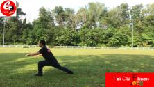 Teachlr.com - Amazing Classic Yi Jin Jing (Muscle and Tendon Enhancement)