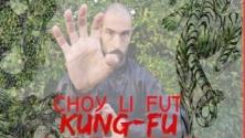 Teachlr.com - Introducción al curso básico de Choy Li Fut