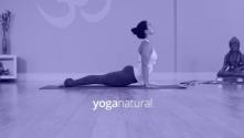 Teachlr.com - Yoga Natural