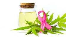 Teachlr.com - Cannabis y cáncer