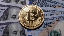 Teachlr.com - Crypto Asset Investing Coins Picking Strategy & Fundamental