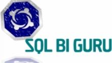 Teachlr.com - Microsoft SQL Server Integration Services (SSIS) Training