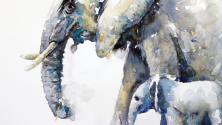 Teachlr.com - Watercolor painting | Paint With Me | Freedom and Expression