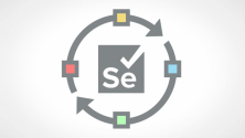 Teachlr.com - Functional Testing Automation Process With Selenium