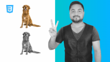 Teachlr.com - CSS Image Filters - Adding Visual Effects To Images (2020)