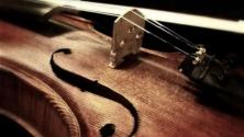 Teachlr.com - Violin Karate